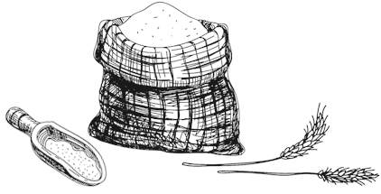 Hand drawn illustration of some flour, wheat and a scoup